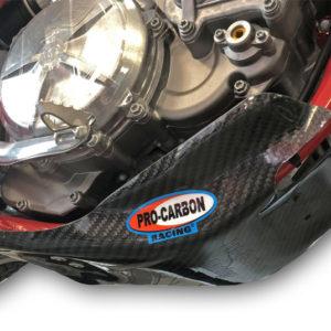 Gas Gas Skid plate - EC 250 / 300 2021-22